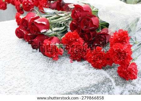 Red carnations and roses laid on the war memorial at winter - stock photo