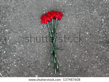 Red carnations lie on the pavement, rest in peace - stock photo