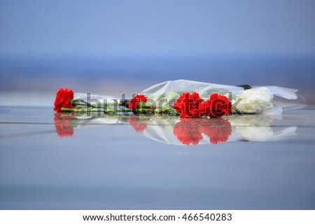 Red carnations  on a marble slab