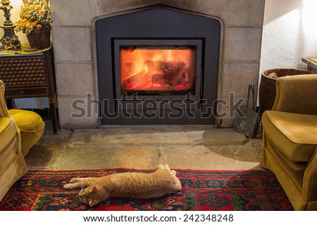 Red cat is basking by the fireplace in the cozy room. Burning fire.