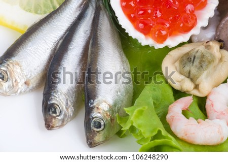 Red caviar and raw cocktail of seafood - stock photo