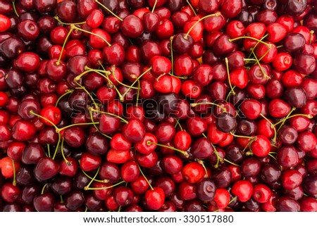 Red Cherries. Cherry selection. ripe berries cherries - stock photo