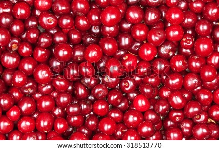 red cherry background