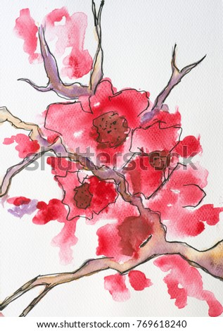 red cherry blossoms spring watercolor painting stock illustration