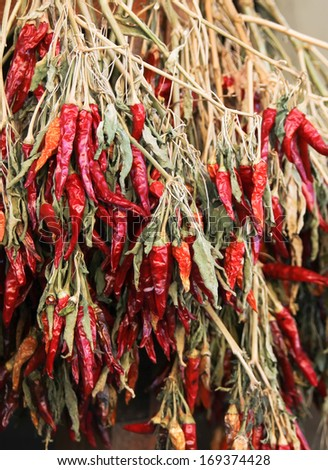 Red chili pepper bunches on market - stock photo