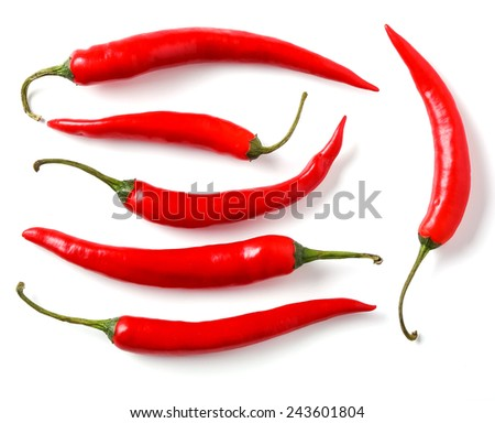 Red chili pepper on a white background - stock photo