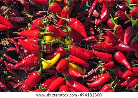 Red chilli pepper background pattern
