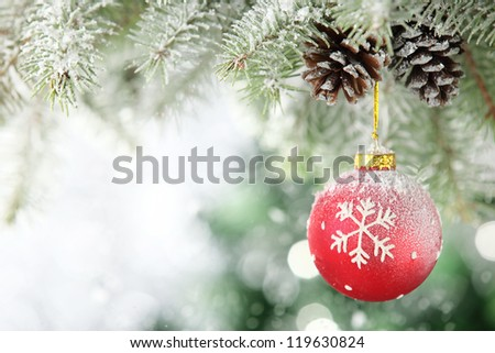 Red Christmas ball hanging on frosty fir tree. - stock photo