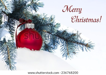 red christmas ball on the fir branch covered with snow - stock photo