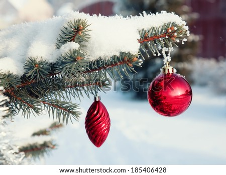 Red Christmas balls on a snow-covered tree branch  - stock photo