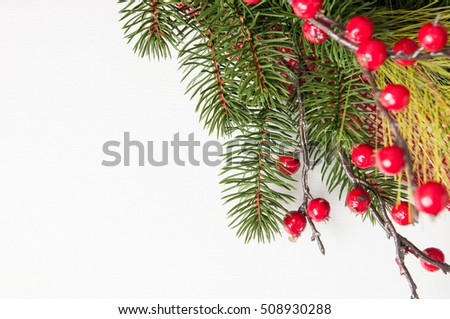 red christmas berries and evergreen branches on a painted white wood background