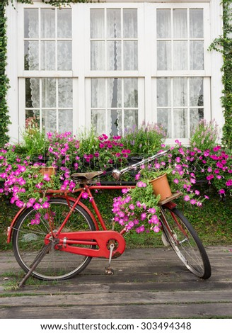 Red classic bicycle with flower in home garden