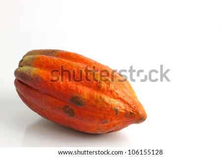 Red Cocoa fruit - stock photo