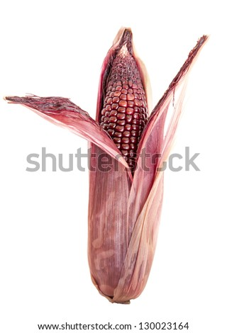 red corn on isolate. - stock photo