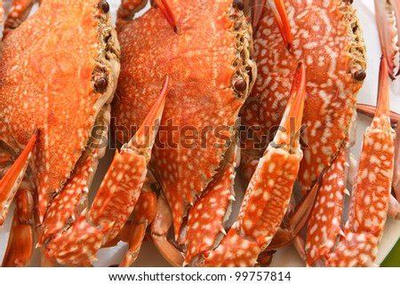 Red crabs on a plate - stock photo