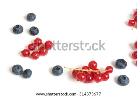 Red currant and blueberry on white background