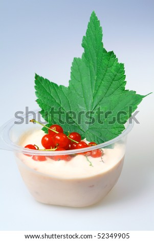 Red currant and milk  yogurt