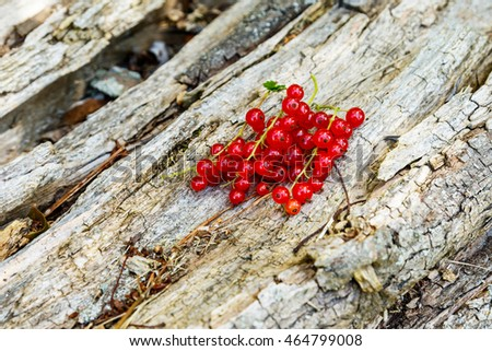 Red currant berries on a wooden surface