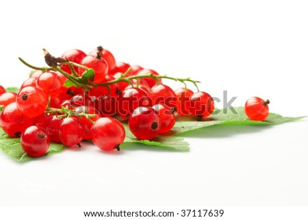 Red currant fruit and green leaves.