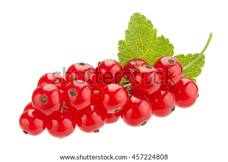 Red currant fruit closeup isolated on white