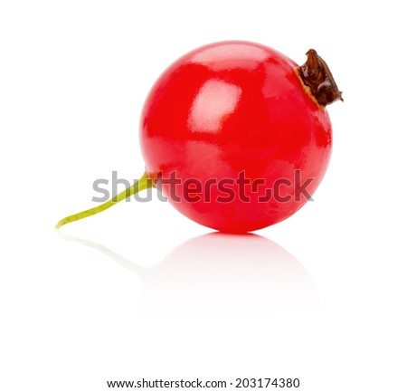 red currant isolated on the white background - stock photo