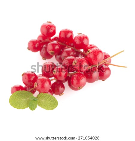 Red Currants close up on white background.