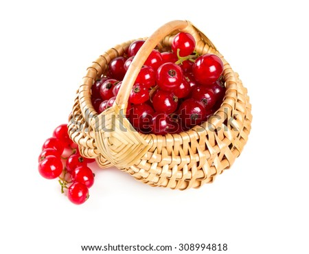 red currants in a basket over white