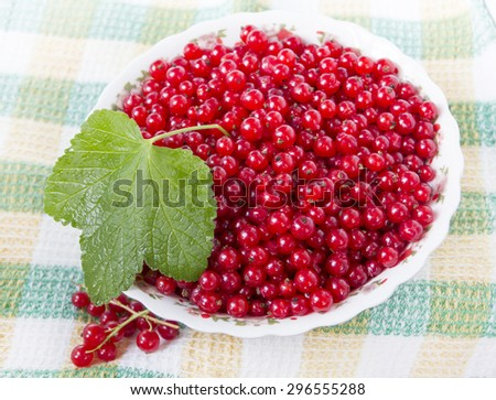 Red currants in a plate - stock photo