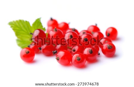 Red currants with leaves close up. - stock photo