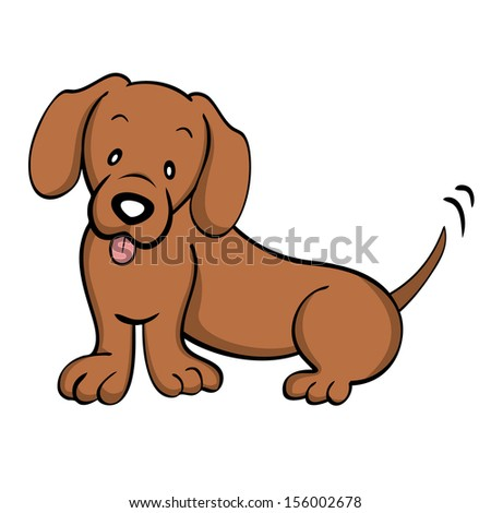 Red Dachshund isolated - stock photo