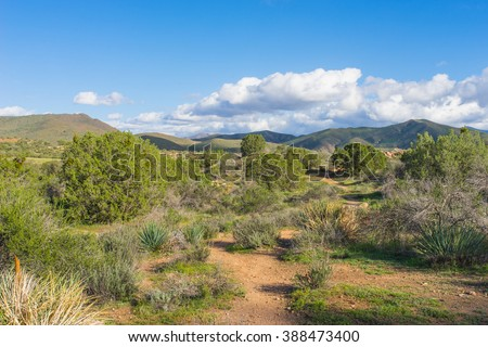 Red dirt path in green growing wilderness of southern California. - stock photo