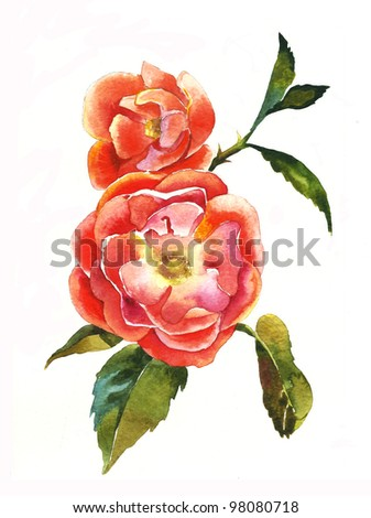 red dogrose brunch watercolor - stock photo