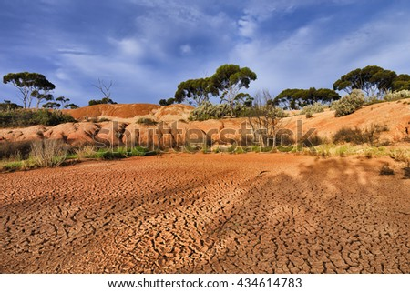 red draught arid soil of outback in Western Australia. Floor of dry billabong surrounded by eucalyptus trees and bush under blue sky and hot sun light.