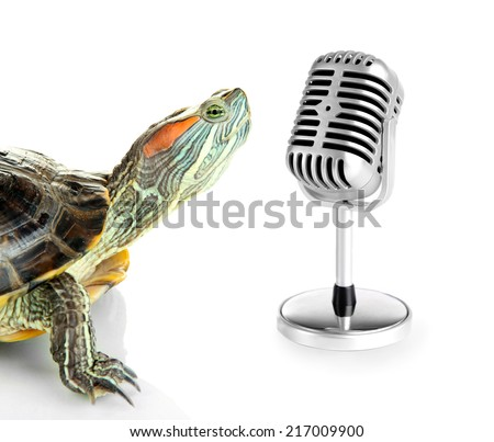 Red ear turtle with microphone isolated on white - stock photo