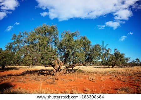 Red Earth in the Australian Outback. Gundabooka national park near the town of Bourke - stock photo