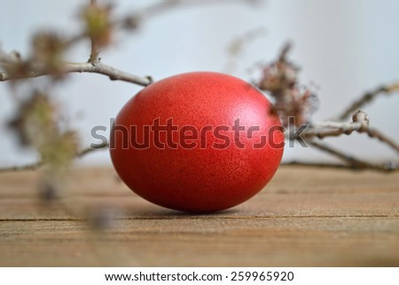 Red Easter egg and spring branches on wooden table - stock photo