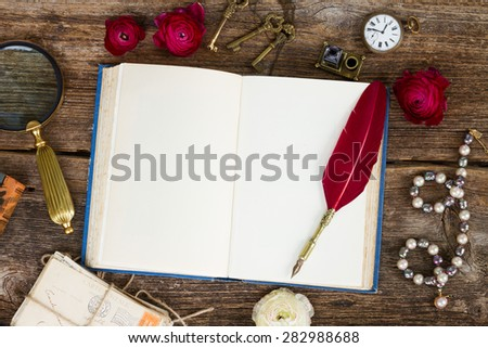 red feather pen on  old blank open book with copy space, top view