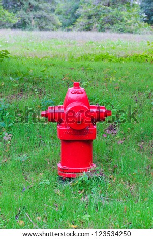 Red fire hydrant in park at summer. - stock photo
