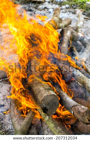 red flame burning dry wood - stock photo