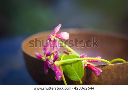 Red flowers in a copper bowl, with dark black background, isolated, selective focus, shallow depth of field, concept of love and faith. - stock photo