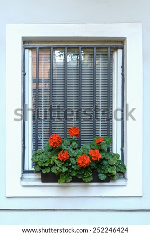 Red Flowers On The Sill Of A Window - stock photo