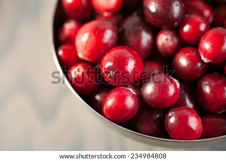 red fresh cranberries in a bowl - stock photo