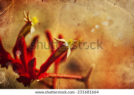 Red fuzzy flowers, Flower background in worm tones, Beautiful red flowers made with color filters, spring bloom, retro background - stock photo