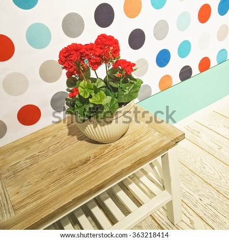 Red geraniums. Detail of a room with contemporary decor.