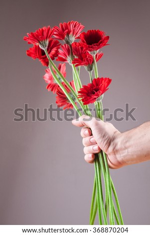 red gerbera donated to the bottom Valentine