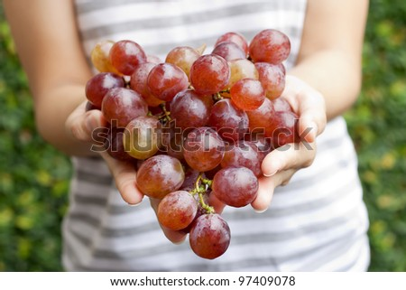 Red grapes hold by two hands.. - stock photo