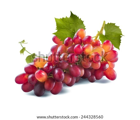 Red grapes long bunch and leaves isolated on white background as package design element - stock photo
