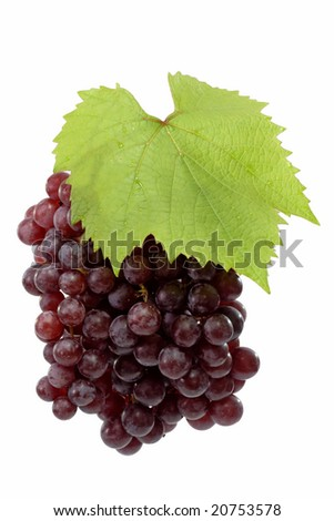 Red grapes with grapeleaf on a bright background. - stock photo