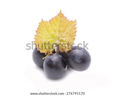 Red grapes with leaf isolated on white background