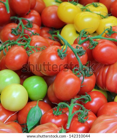 Red, green and yellow tomatoes on the vine, Borough market, London - stock photo